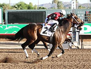 First Strike wins the 2012 Bienvenidos Stakes.