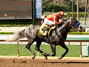 Five Palms - Allowance Win, March 26, 2015.