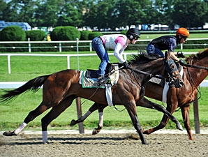 Final Workout Plans for Belmont Contenders