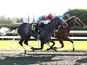 Five Star Fun, Allowance win, Keeneland, Oct 16, 2011.