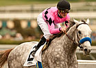 Flashback, &#39;Ghost Inside in Santa Anita Derby