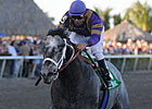 Flashpoint Lights Up Hutcheson Stakes