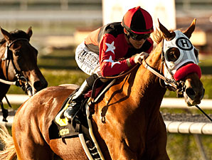 Flashy Ways Seeks Rebound in Miesque Stakes