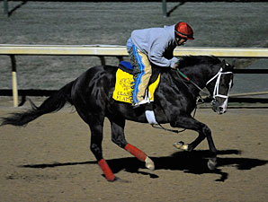Flat Out Will Run in Clark Handicap