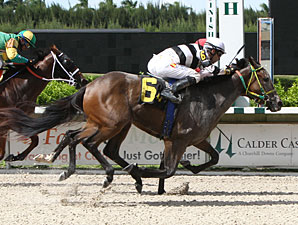 Flat Out Charming wins the 2013 Lindsay Frolic Stakes.