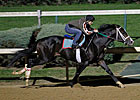 Flat Out&#39;s Workout Pleases Trainer Dickey