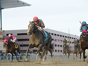 Old Pro Flat Out Powers Home in Cigar Mile