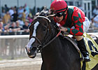 Multiple Grade I Winner Flat Out Retired