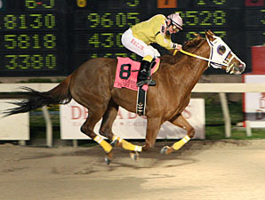 Flawless Gold wins the 2010 Premier Night Matron.