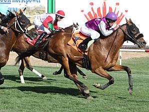 Flexiplus wins the Hasta La Vista Handicap.