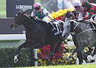 Flintshire Shines in Hong Kong Vase Victory
