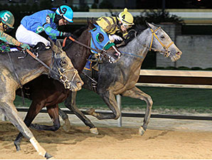 Flirting Song wins the 2014 West Virginia Breeders Classic Distaff.