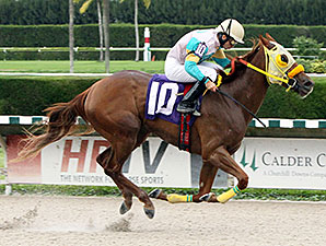Flutterby wins the 2013 Cut The Charm Stakes.