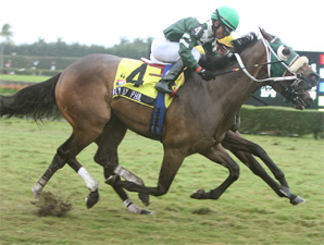 Fly By Phil Scores Big Win for 2nd-Year Sire