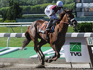 Fly Down Shoots Bullet for Jim Dandy