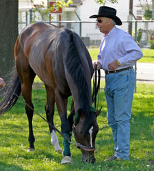 Haskin's Belmont Report: The D. Wayne Reign