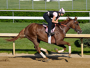 Flying Spur at Churchill Downs, April 29, 2009.