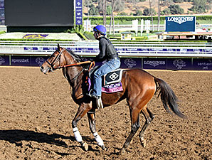 Flying Tipat - Breeders' Cup 2014