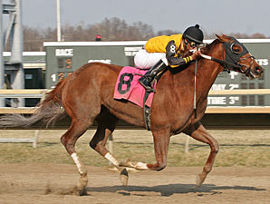Fordangshore wins the 2012 Bensalem Stakes.