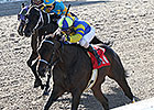 Fordubai Upsets Louisiana Handicap at 7-1