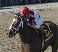 Forest Danger Retired; to Stand at Taylor Made