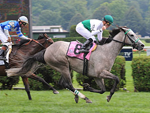 Forever Together Favored for F&M Turf Repeat