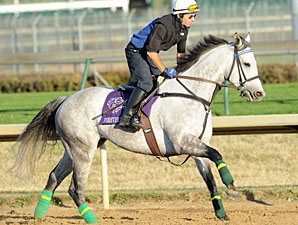 Forever Together Preps for Third F&M Turf
