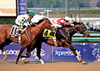 Slideshow: 2012 Breeders&#39; Cup - Day 2
