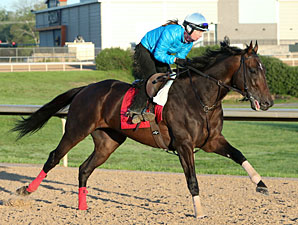 Fort Larned at Oaklawn on April 12, 2013