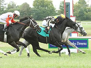Fort Prado (gray) wins the 2009 Kentucky Cup Turf Dash.
