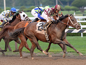 GII Winner Forty Tales Retires to Sequel NY