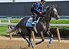 Belmont Stakes News Minute: 06/06/2013