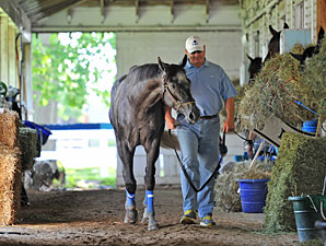 Frac Daddy - Belmont Park, June 6, 2013.