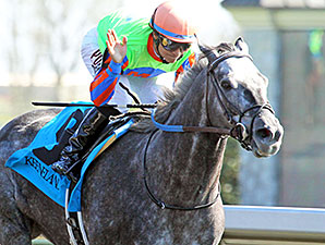 Frac Daddy wins the 2014 Ben Ali.