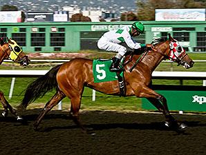 Jockey Alvarado Collects 3,000th Victory