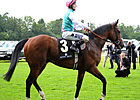 Pedigree Analysis: Frankel&#39;s Choice