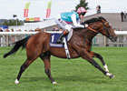 Slideshow: Frankel