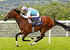 Frankel to Undergo Second Scan Next Week