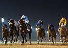 Frankyfourfingers Takes Al Maktoum Challenge