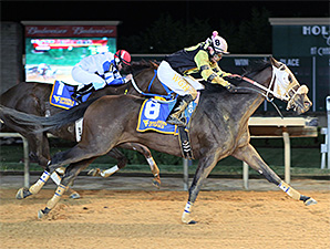 Purses, Races Set for WV Classics Card