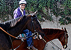 Well-Known Exercise Rider Freddy Wilson Dies