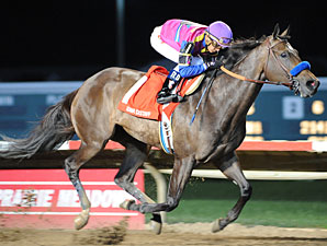 Freedom Star wins the 2011 Iowa Distaff.