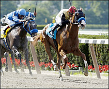 Friendly Michelle Popular Prioress Winner
