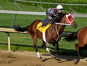 Friesan Fire Sizzles in Final Pre-Derby Work