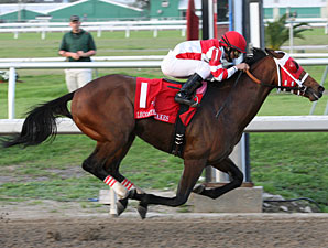 Friesan Fire Returns to Races at Fair Grounds