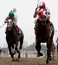 Friesan Fire Returns to CD for the Alysheba