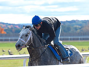 Route de la Breeders' Cup 2015 - Page 3 Frosted10232015SD298
