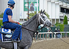 Frosted Carries Hopes of Sheikh Mohammed