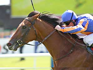 'Fire' Burns Brightly in the Irish Derby