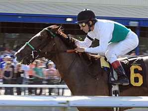 Fugitive Angel wins the 2011 Ambassador of Luck Stakes.